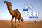 APA BEDANYA HALQ DENGAN LABBAH?